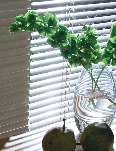 ホワイト植物