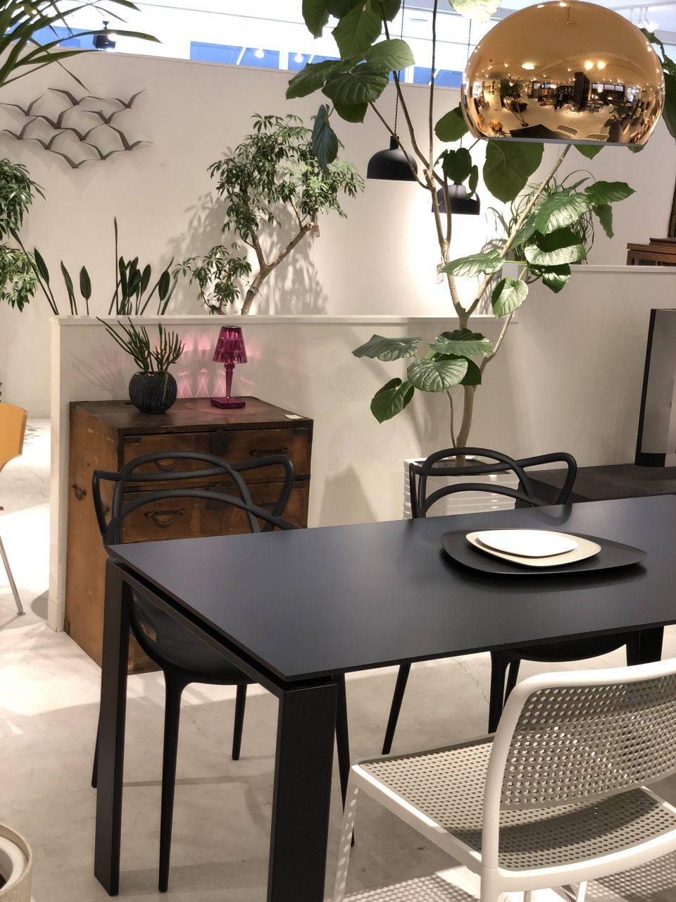 カルテルのダイニングテーブル・フォーとマスターズチェアと時代物の箪笥を新潟市のインテリアショップで合わせました