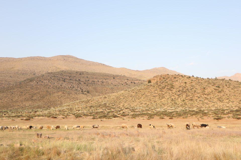 ザクロス山脈