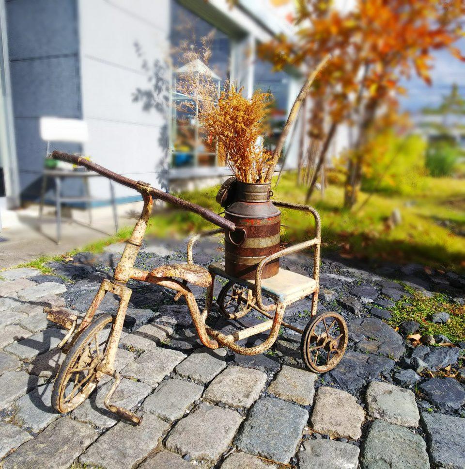 ブリキの三輪車にドライフラワーを飾っている様子
