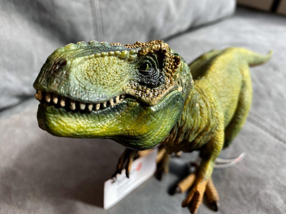 恐竜のアップ