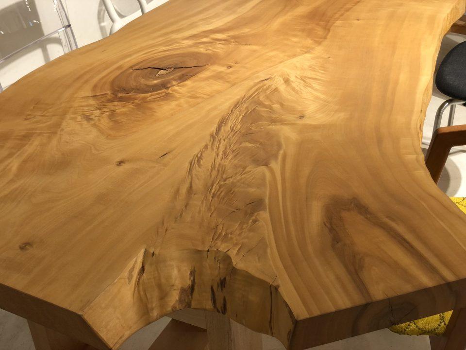 大きく枝が分かれる形が素敵な栃の木は新潟市のボーデコールにあります