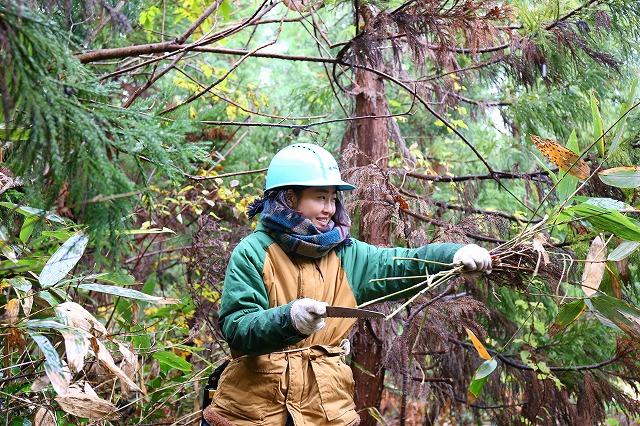 ボー・デコールの森での林業研修