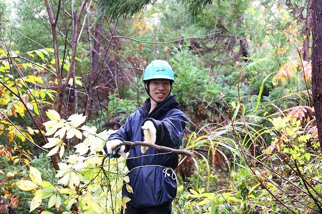 2019年ボー・デコールの森の林業研修