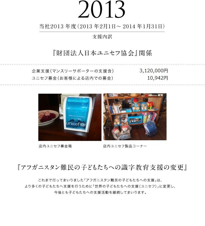 2013年度 支援活動報告